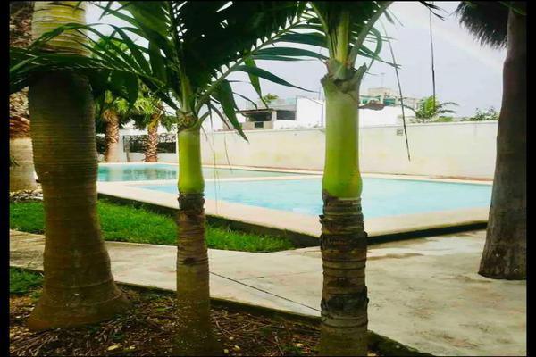 Foto de departamento en renta en  , playa del carmen centro, solidaridad, quintana roo, 20463202 No. 06