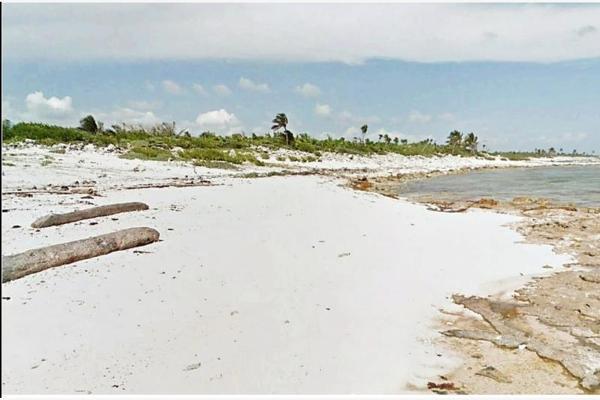 Foto de terreno habitacional en venta en playa , mahahual, othón p. blanco, quintana roo, 8855227 No. 01