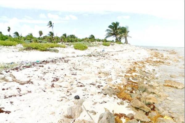 Foto de terreno habitacional en venta en playa , mahahual, othón p. blanco, quintana roo, 8855227 No. 02