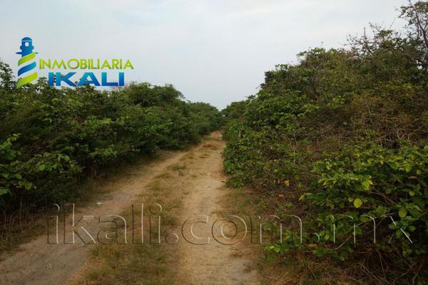 Foto de terreno habitacional en venta en playa tamiahua , tantalamos, tamiahua, veracruz de ignacio de la llave, 7255713 No. 03