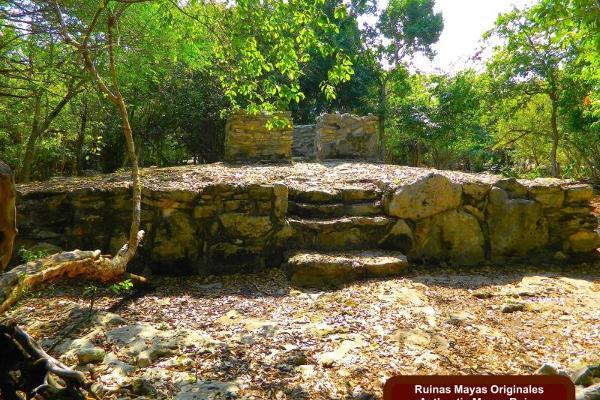 Foto de terreno habitacional en venta en playacar mls-elpc200, playa car fase i, solidaridad, quintana roo, 9913437 No. 13