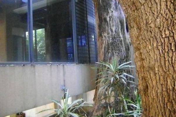 Foto de edificio en renta en  , potrero verde, cuernavaca, morelos, 8090526 No. 03