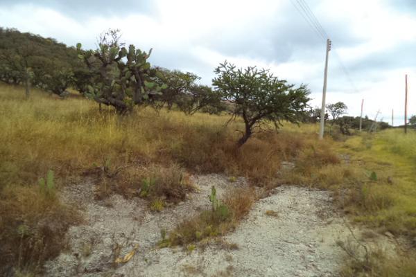 Foto de terreno habitacional en venta en  , praderas, tepeji del río de ocampo, hidalgo, 2631141 No. 02