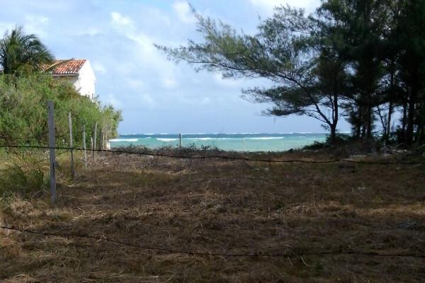 Foto de terreno comercial en venta en predio fraccionamiento maria irene , puerto morelos, benito juárez, quintana roo, 3451578 No. 03