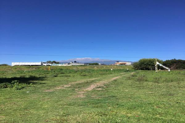 Foto de terreno habitacional en venta en predio llano grande , san rafael tlanalapan, san martín texmelucan, puebla, 0 No. 02