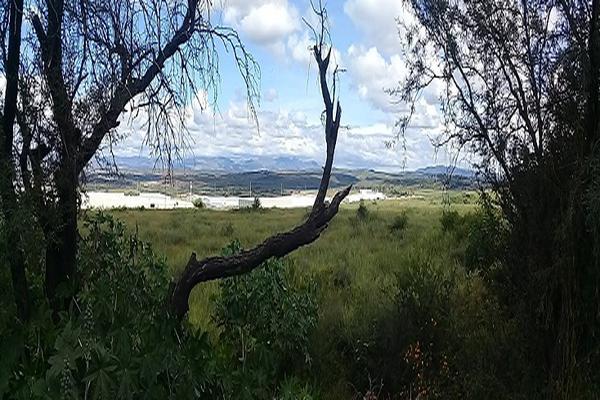 Foto de terreno industrial en venta en predio rústico el tepamal , hacienda de márquez, irapuato, guanajuato, 5926326 No. 03