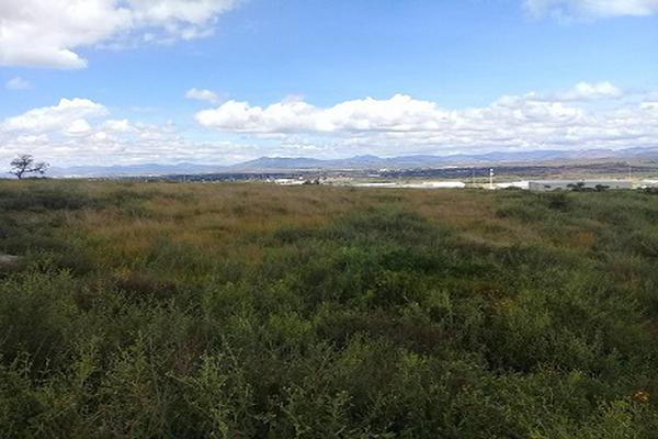 Foto de terreno industrial en venta en predio rústico el tepamal , hacienda de márquez, irapuato, guanajuato, 5926326 No. 04