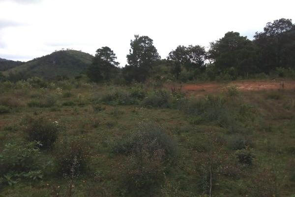 Foto de terreno habitacional en venta en predio rustico san isidro, a 18 kilometro sobre camino a san cristobal - el manzanillo s/n , san felipe ecatepec, san cristóbal de las casas, chiapas, 7300370 No. 01