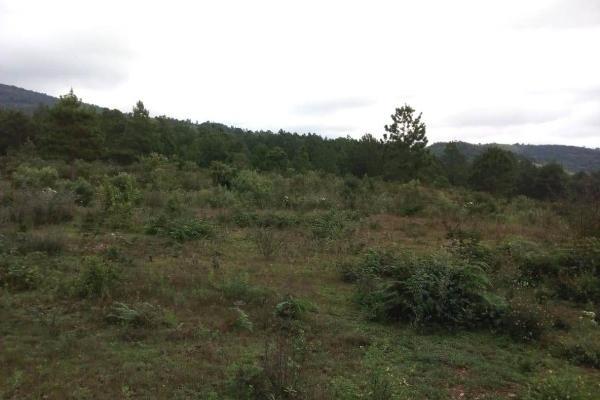 Foto de terreno habitacional en venta en predio rustico san isidro, a 18 kilometro sobre camino a san cristobal - el manzanillo s/n , san felipe ecatepec, san cristóbal de las casas, chiapas, 7300370 No. 02
