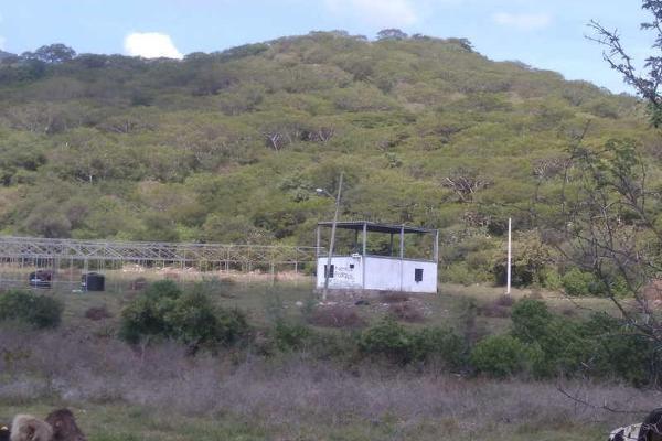 Foto de terreno comercial en venta en predio rustico tenamastes 2, el crucero de san isidro, zacoalco de torres, jalisco, 5835756 No. 05