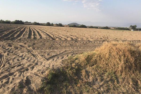 Foto de terreno comercial en venta en predio urbano , santa maría nativitas, calimaya, méxico, 13303398 No. 02