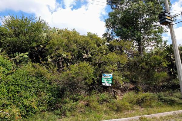 Foto de terreno habitacional en venta en  , presa escondida, tepeji del río de ocampo, hidalgo, 10197571 No. 06