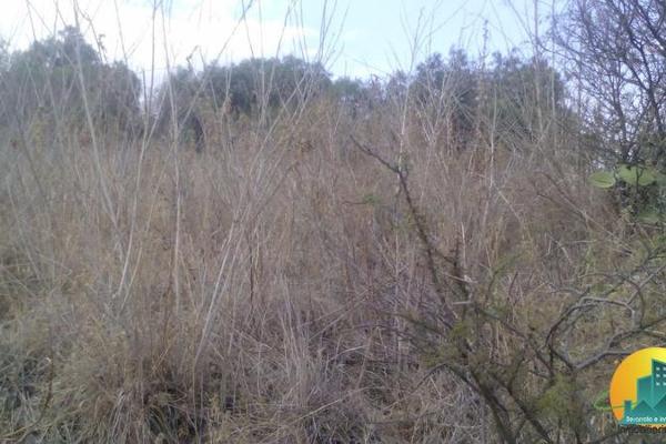 Foto de terreno habitacional en venta en  , la presa, mineral del chico, hidalgo, 8063825 No. 05