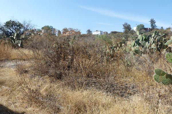Foto de terreno habitacional en venta en presa las animas , presa escondida, tepeji del río de ocampo, hidalgo, 19235760 No. 05