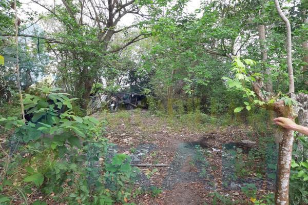 Foto de terreno habitacional en venta en  , primavera, poza rica de hidalgo, veracruz de ignacio de la llave, 7474045 No. 08