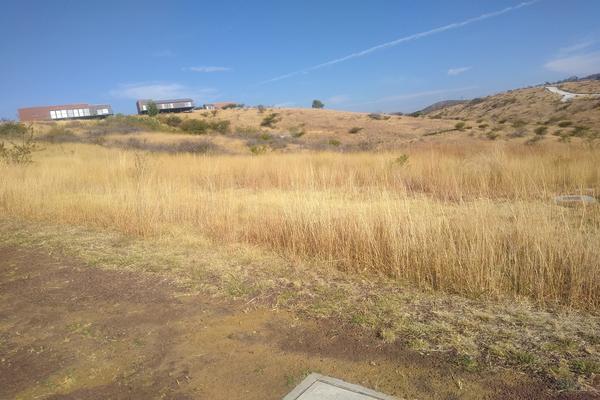 Foto de terreno habitacional en venta en primera sección , el nogal (las palancas), guanajuato, guanajuato, 0 No. 03