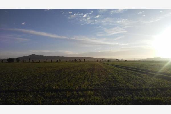 Foto de rancho en venta en principal 1, lomas de alchichica, izúcar de matamoros, puebla, 9093791 No. 07