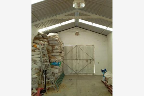 Foto de rancho en venta en principal 1, lomas de alchichica, izúcar de matamoros, puebla, 9093791 No. 22