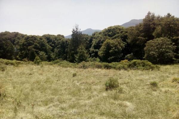 Foto de terreno habitacional en venta en principal sin nombre sin numero, san miguel tecpan, jilotzingo, méxico, 5896936 No. 05