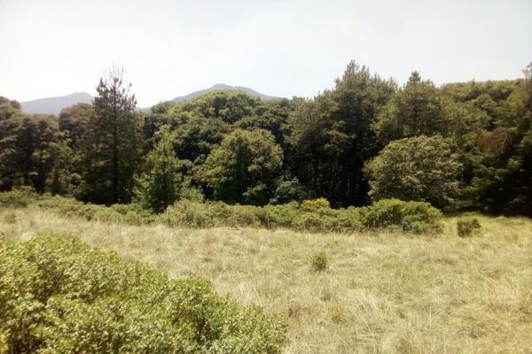 Foto de terreno habitacional en venta en principal sin nombre sin numero, san miguel tecpan, jilotzingo, méxico, 5896936 No. 09