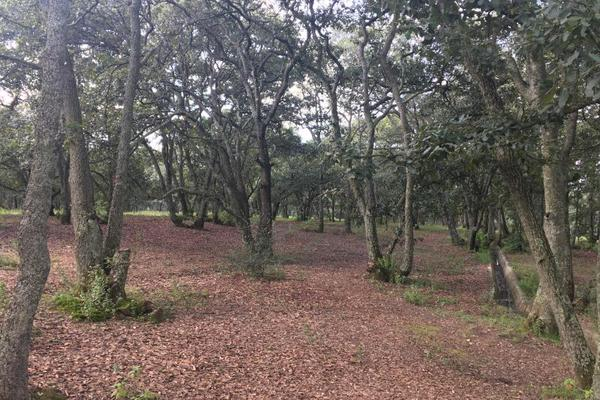 Foto de terreno habitacional en venta en principal sin numero, villa del carbón, villa del carbón, méxico, 5906471 No. 02