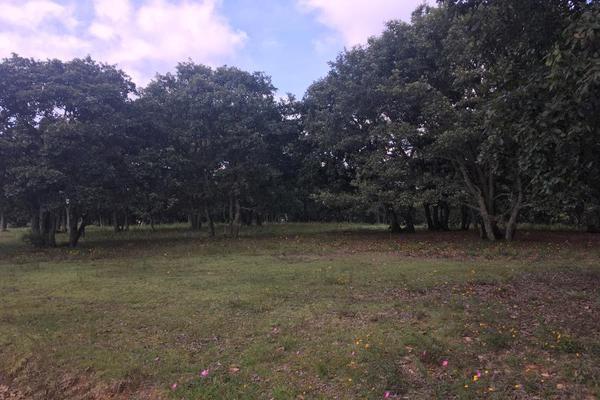 Foto de terreno habitacional en venta en principal sin numero, villa del carbón, villa del carbón, méxico, 5916445 No. 02