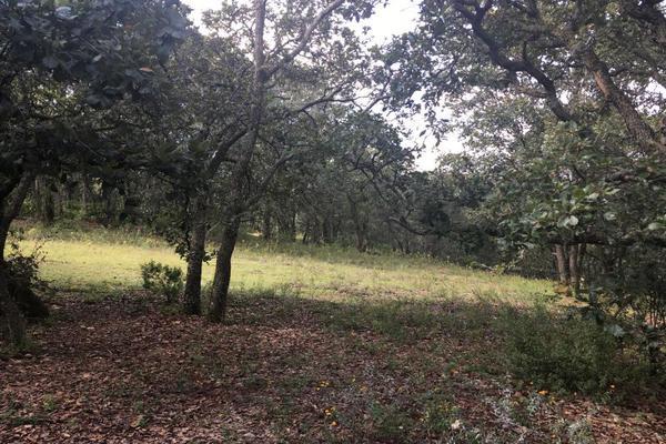 Foto de terreno habitacional en venta en principal sin numero, villa del carbón, villa del carbón, méxico, 5916445 No. 05