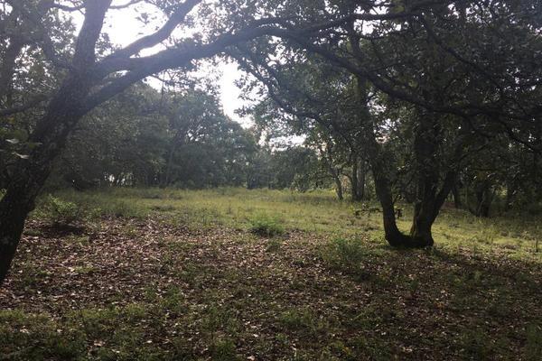 Foto de terreno habitacional en venta en principal sin numero, villa del carbón, villa del carbón, méxico, 5916445 No. 06