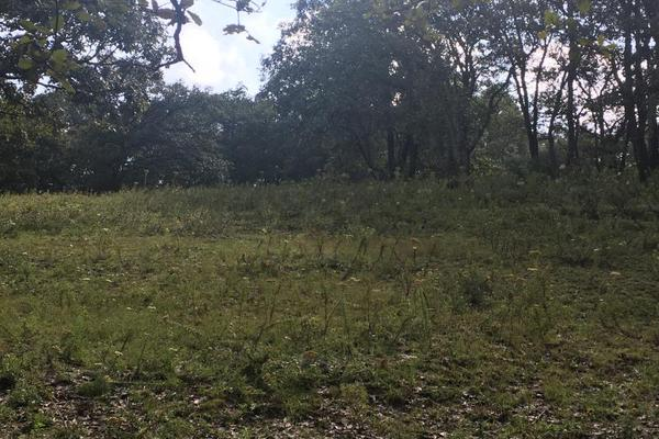 Foto de terreno habitacional en venta en principal sin numero, villa del carbón, villa del carbón, méxico, 5916445 No. 07