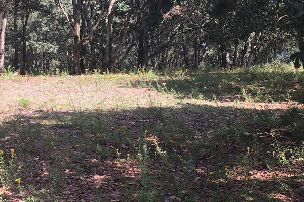 Foto de terreno habitacional en venta en principal sin numero, villa del carbón, villa del carbón, méxico, 5916445 No. 10