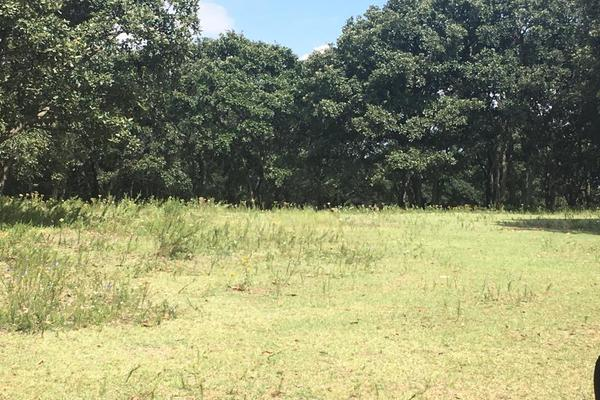 Foto de terreno habitacional en venta en principal sin numero, villa del carbón, villa del carbón, méxico, 5916445 No. 11
