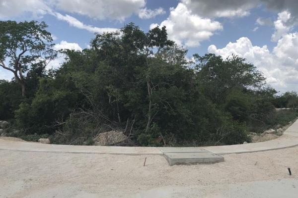 Foto de terreno habitacional en venta en  , privada maya, mérida, yucatán, 9285123 No. 07