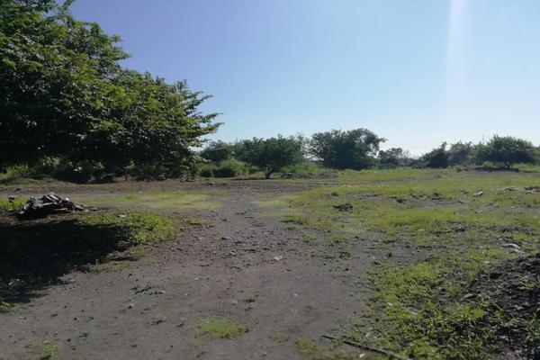 Foto de terreno comercial en venta en privada de la cañada 0, el tecolote, colima, colima, 7151752 No. 06