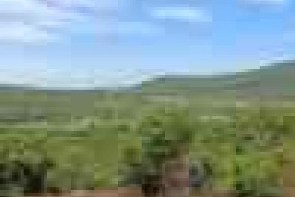 Foto de terreno habitacional en venta en privada de las estacas 2, piedra encimada, ayala, morelos, 8877941 No. 02