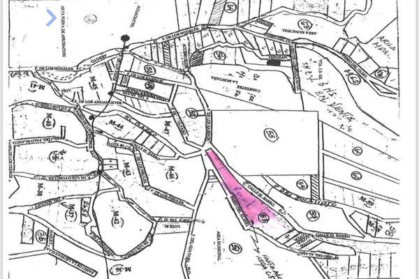 Foto de terreno industrial en venta en privada del alamo 217, el barro, monterrey, nuevo león, 13384630 No. 02
