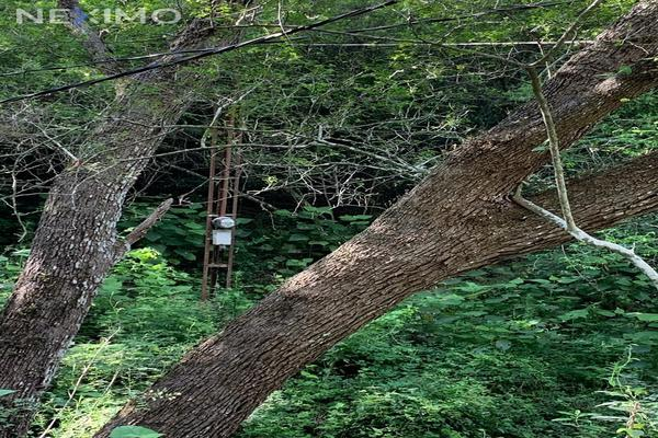 Foto de terreno industrial en venta en privada del alamo 217, el barro, monterrey, nuevo león, 13384630 No. 05