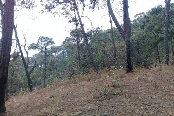 Foto de terreno habitacional en venta en privada del roble , monte alto, valle de bravo, méxico, 8686647 No. 01