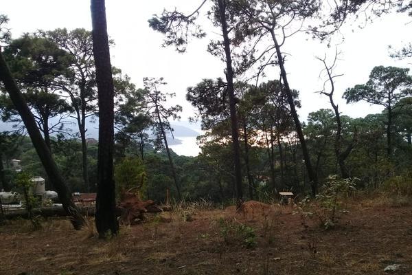 Foto de terreno habitacional en venta en privada del roble , monte alto, valle de bravo, méxico, 8686647 No. 03