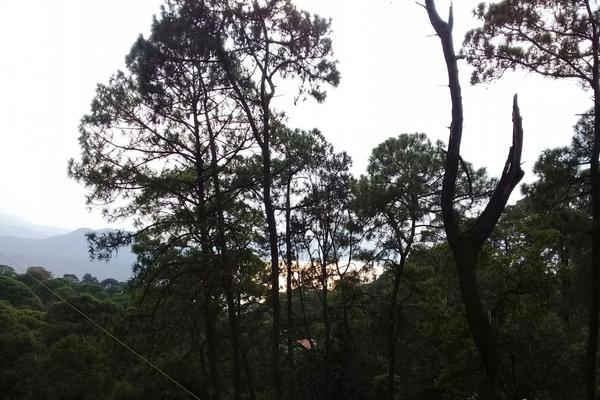 Foto de terreno habitacional en venta en privada del roble , monte alto, valle de bravo, méxico, 8686647 No. 04