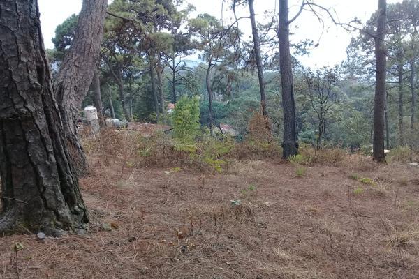Foto de terreno habitacional en venta en privada del roble , monte alto, valle de bravo, méxico, 8686647 No. 05