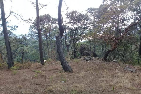 Foto de terreno habitacional en venta en privada del roble , monte alto, valle de bravo, méxico, 8686647 No. 06