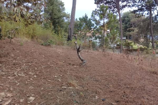Foto de terreno habitacional en venta en privada del roble , monte alto, valle de bravo, méxico, 8686647 No. 07