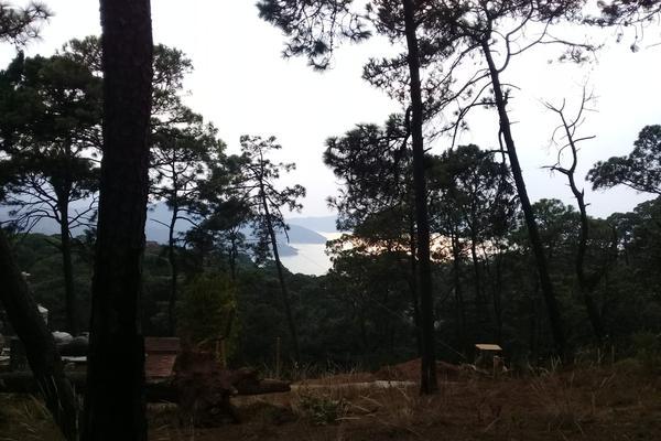 Foto de terreno habitacional en venta en privada del roble , monte alto, valle de bravo, méxico, 8686647 No. 08