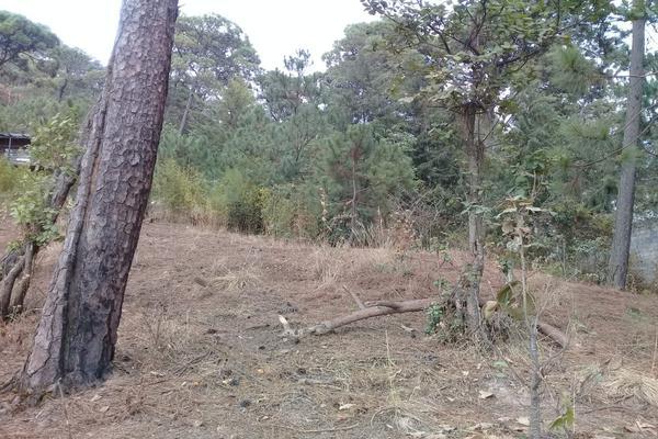 Foto de terreno habitacional en venta en privada del roble , monte alto, valle de bravo, méxico, 8686647 No. 09