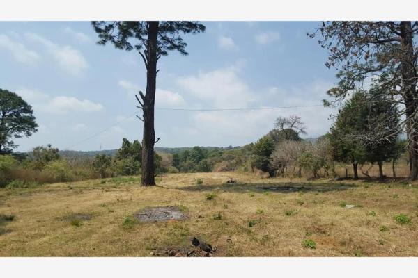 Foto de terreno habitacional en venta en privada la mora 1, chamilpa, cuernavaca, morelos, 6136009 No. 02