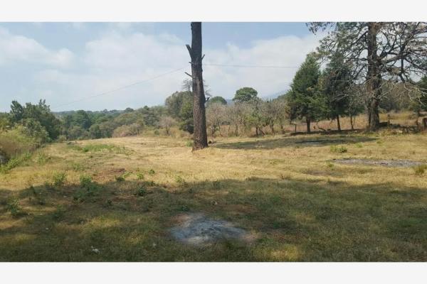 Foto de terreno habitacional en venta en privada la mora 1, chamilpa, cuernavaca, morelos, 6136009 No. 04