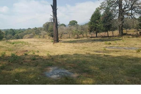 Foto de terreno habitacional en venta en privada la mora 1, chamilpa, cuernavaca, morelos, 6136009 No. 05