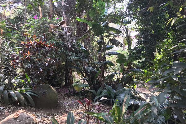 Foto de casa en venta en privada neptuno , rancho cortes, cuernavaca, morelos, 8290656 No. 13