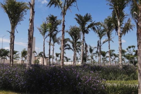 Foto de terreno habitacional en venta en privada soluna , temozon norte, mérida, yucatán, 5935661 No. 09