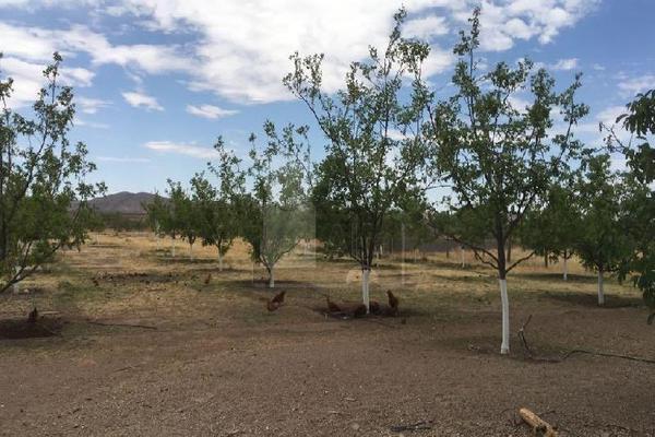 Foto de terreno comercial en venta en prof. leticia palma , ocampo o torreón, chihuahua, chihuahua, 5713273 No. 13